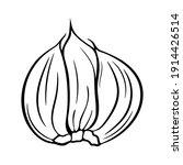 garlic cloves isolated on white ... | Shutterstock .eps vector #1914426514
