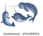Narwhal Underwater Sealife...
