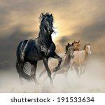 black stallion | Shutterstock . vector #191533634