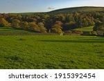 Autumn At Storiths  Bolton...