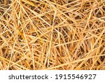 Background With Yellow Straw....
