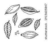cocoa set. hand drawn vector... | Shutterstock .eps vector #1915605847