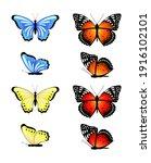 bright set of vector butterflies | Shutterstock .eps vector #1916102101