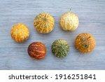 Decorative Pumpkin  Zucchini ...