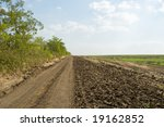 rural road between the forest and field - stock photo