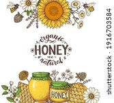 honey hand drawn vector... | Shutterstock .eps vector #1916703584