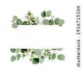 Green leaves eucalyptus...