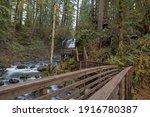Hiking Trail With Wood Bridge...