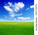 field of green grass and blue...   Shutterstock . vector #19171471