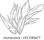 vector illustration of hand... | Shutterstock .eps vector #1917285677