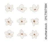 set of hand drawn flowers.... | Shutterstock .eps vector #1917507584