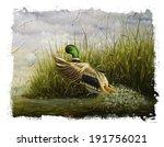 Mallard Duck Torn Edges