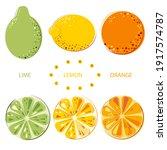 green juicy lime  lemon  sunny...   Shutterstock .eps vector #1917574787