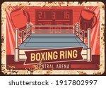 Box And Boxing Ring  Metal...