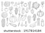 vegetables sketch icons  farm... | Shutterstock .eps vector #1917814184