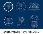 modern linear graceful symbolic ... | Shutterstock .eps vector #1917819017