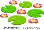 water lily or lotus. plant on...