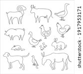 minimalist one line animals set.... | Shutterstock .eps vector #1917953171