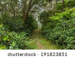 hiking trail | Shutterstock . vector #191823851