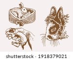 graphical vintage set of... | Shutterstock .eps vector #1918379021