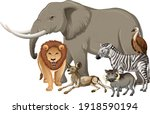Group Of Wild African Animal On ...