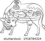 lord vishnu and lord bramha...   Shutterstock .eps vector #1918784324