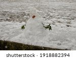 Snowman With A Lifespan Of A...