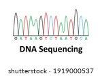 Sample Chromatogram Of Dna...