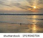 Colorful Orange Ocean Beach...