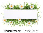 banner with grass and flowers... | Shutterstock . vector #191910371