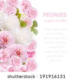 flowers background isolated on... | Shutterstock . vector #191916131