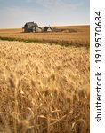 Small photo of Rustic Abandoned Farmstead. Old abandoned farm buildings on agricultural land.