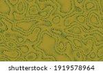 seamless texture pattern.... | Shutterstock .eps vector #1919578964
