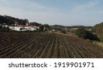Aerial View Of Winery Estate In ...