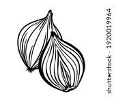 half cut onion with whole onion ... | Shutterstock .eps vector #1920019964
