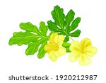 Green Leaf And Yellow Flowers...