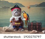 Funny Cat Dressed As A Pirate...