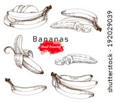 bananas set   vector hand... | Shutterstock .eps vector #192029039