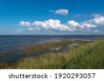 Landscape At The Mouth Of The...