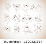 set of 12 funny doodle zodiac...   Shutterstock .eps vector #1920321914