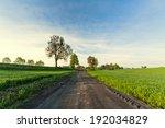 Village Road Through The Fields