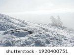 Wonderful Winter Landscape ...