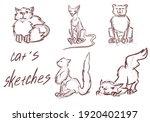 sketches of cats. cat's...   Shutterstock . vector #1920402197