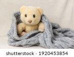 The Soft Toy Animal Teddy Bear...