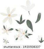 spring flower  plants ... | Shutterstock .eps vector #1920508337
