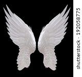 white angel wing isolated | Shutterstock . vector #192058775