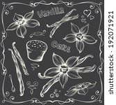 freehand contours of vanilla... | Shutterstock .eps vector #192071921