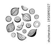 onion round frame. vector... | Shutterstock .eps vector #1920890327