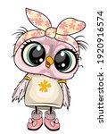 cute owl illustration  textile... | Shutterstock . vector #1920916574