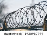 Barbed Wire On Fence Of...